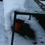 iced_table1